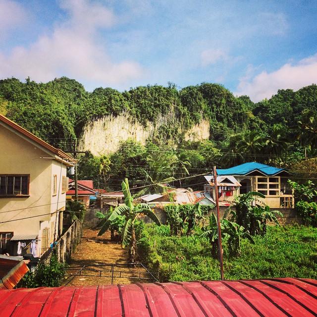 cliff-garden