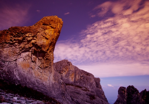 Kinabalu Dreams